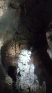 秋芳洞 画像