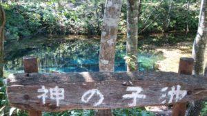 神の子池 画像