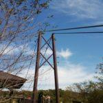 つつじ吊橋 画像